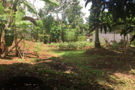 Land for sale in Central