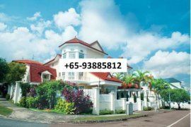 6 bedroom house for rent in District 25, North East